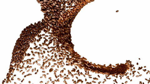 Coffee beans whirl with slow motion over white Stock Video Footage