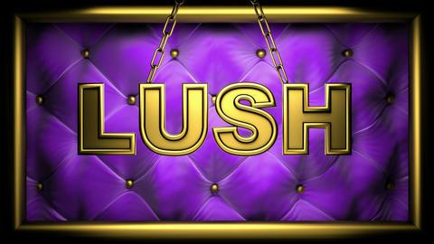 lush Stock Video Footage