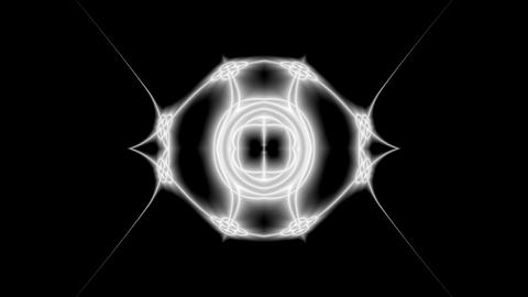 SilverHaze Bug 01 Stock Video Footage