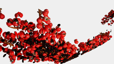 Guarana flow with slow motion over white Stock Video Footage