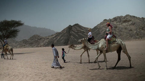 Group of tourists is riding the camels through the Footage