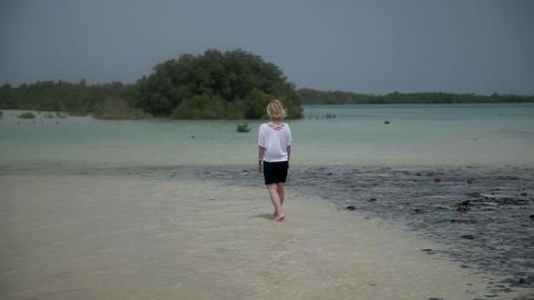 Woman Walking On Shallow Sea Beach In Interesting  stock footage