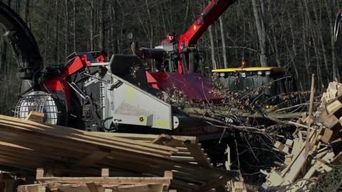 Wood 008 HD stock footage