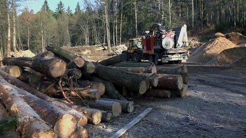 Wood 053 HD Footage