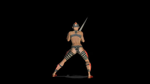 Warrior 2 Animation