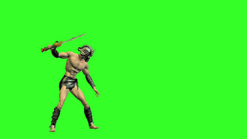 Gladiator 1 stock footage