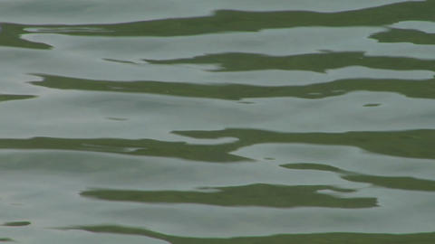 water ripple closeup 08 Footage