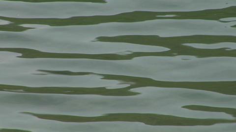 water ripple closeup 08 Stock Video Footage