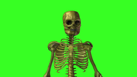Skeleton 9 Stock Video Footage