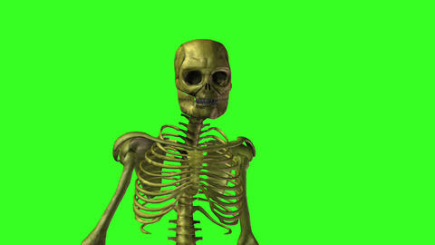 Skeleton 9 Stock Video Footage