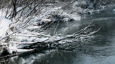 River in winter forest Stock Video Footage