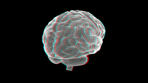 brain xray anaglyph Animation