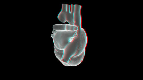 heart xray anaglyph Animation