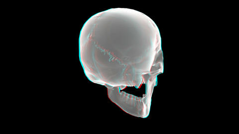Heart Xray Anaglyph stock footage