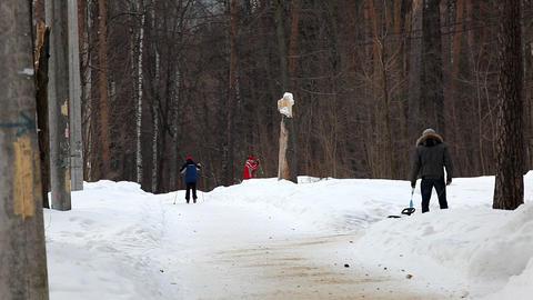 2084 Winter Park People HD J96 Stock Video Footage