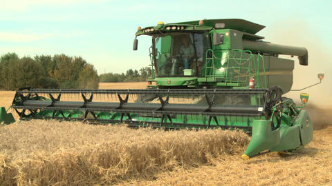 Wheat harvesting with combine 02 Live Action