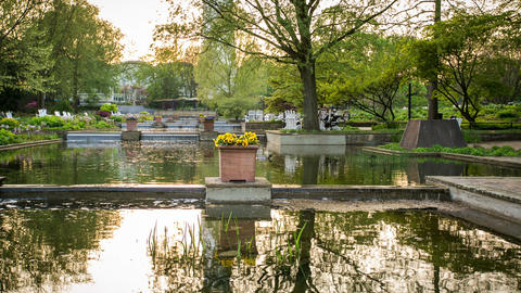hamburg city park relaxing with fountain and sunse Footage
