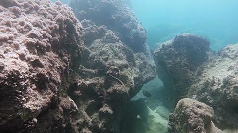 Floating between two rocks on the ocean floor Footage