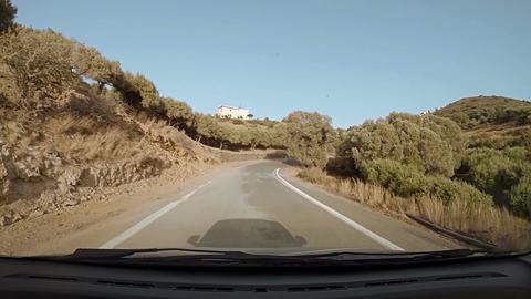 Bendy road driving amid olive groves Acción en vivo
