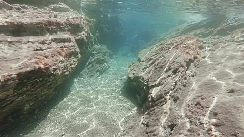 Swimming along rocks on the ocean floor Acción en vivo