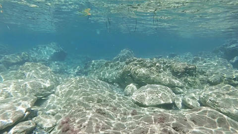 Shallow lagoon with light refraction on rocks Footage