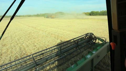 Combine Harvesting Footage