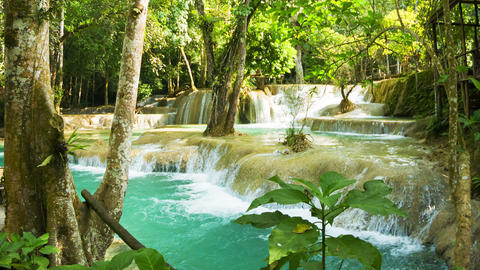 Kouang Si Waterfall. Laos. Luang Prabang. Thickets Footage
