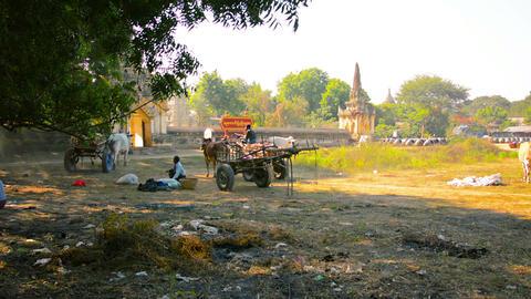 BAGAN. MYANMAR - 11 JAN 2014: The Territory On Whi stock footage