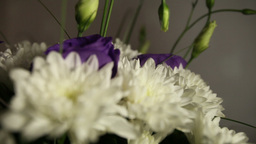 bridal bouquet of white chrysanthemums Footage
