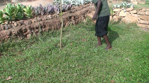 Malawi: african boy cuts grass in yard Stock Video Footage