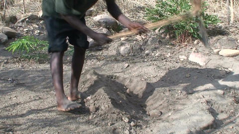 Malawi: african man digs a row in a ground 2 Footage