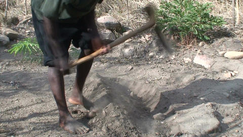 Malawi: african man digs a row in a ground 2 Stock Video Footage