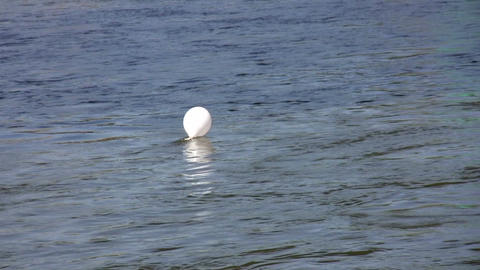 White balloon in a river 1 Stock Video Footage