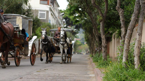 riding carriage Stock Video Footage