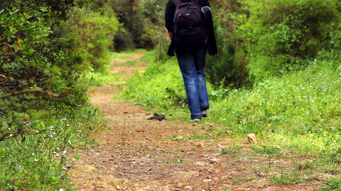 walk down a path Stock Video Footage