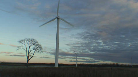 Wind power electric station at sunrise, view Footage
