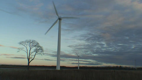 Wind power electric station at sunrise, view Stock Video Footage