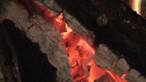 Fireplace burning wood log three, close-up Stock Video Footage