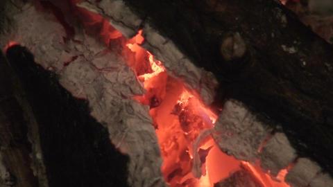 Fireplace burning wood log three, close-up Stock Video Footage