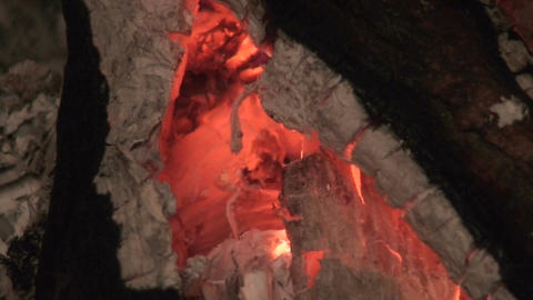 Fireplace burning wood log one, close-up Stock Video Footage
