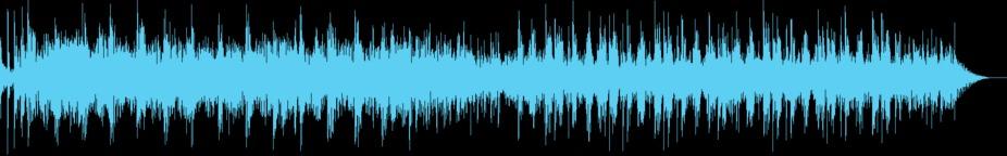 Dub Metal (30-secs version) Music