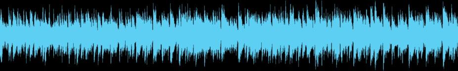 Acoustic Loop - 20 Music