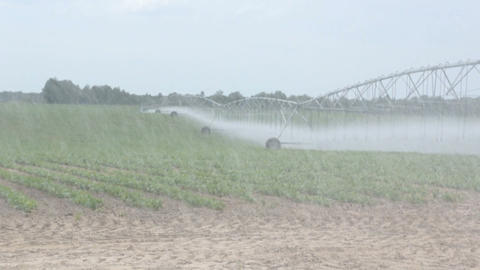 farm field irrigation Footage
