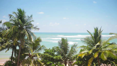 Beautiful tropical beach with coconut palm trees Footage