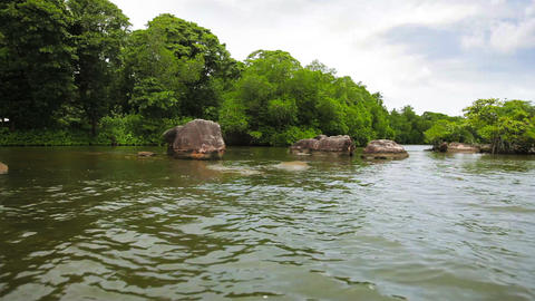 Rocks And Bushes On The Shore Of A Tropical River stock footage