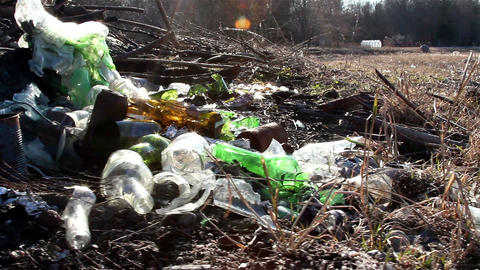 A part of the forest where there are garbage Footage