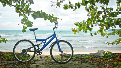 Bicycle on a tropical beach. Wild nature of Thaila Footage