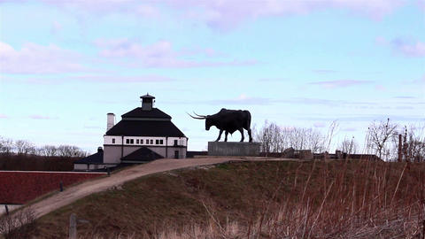 A statue of a bull Footage