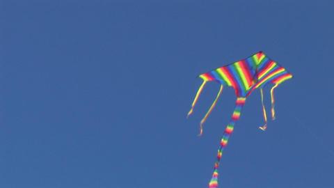 kite 13 Footage