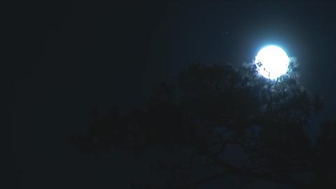 moon 1 Footage